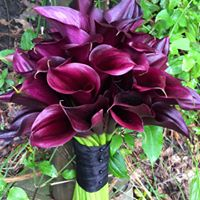 WEDDING  BOUQUET-MINI CALLA- LARGE
